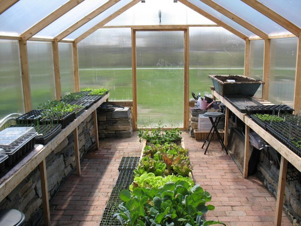 Quick cheap easy greenhouse for the garden for Quick easy landscape ideas