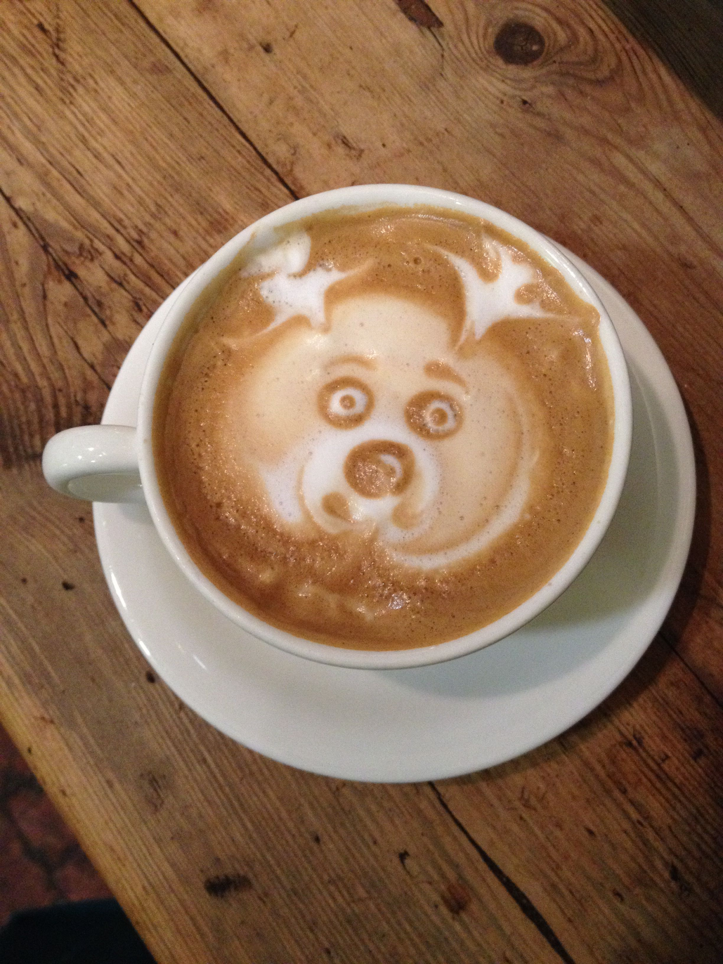 23++ Who owns blue nose coffee ideas