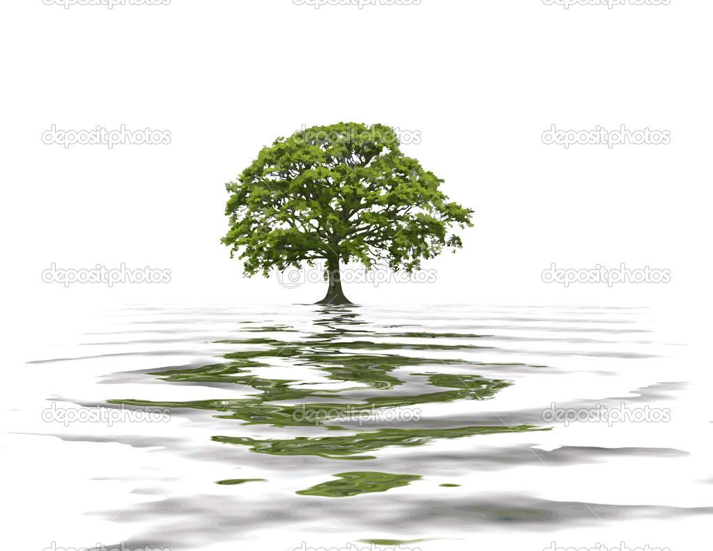 oak tree logo design | Cart Lightbox Share Facebook Twitter Google ...