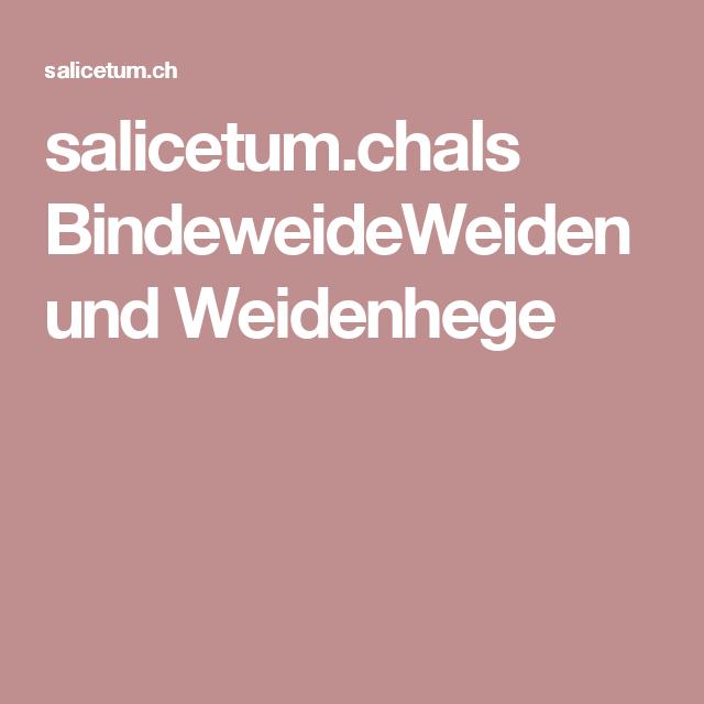 salicetum.chals BindeweideWeiden und Weidenhege