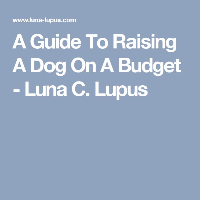 A Guide To Raising A Dog On A Budget - Luna C. Lupus