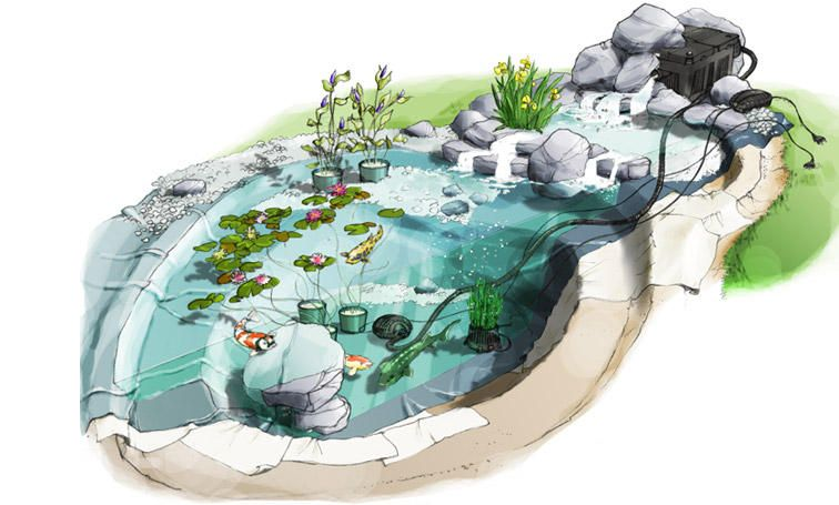 cr er un bassin dans son jardin choisissez un endroit bien. Black Bedroom Furniture Sets. Home Design Ideas
