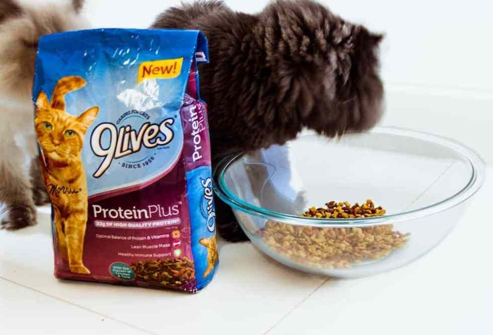 9lives protein plus cat food an optimal balance of