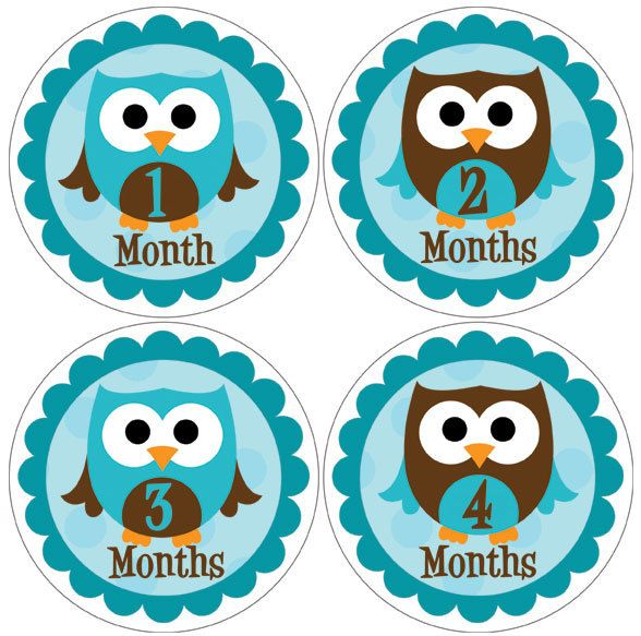 12 baby month stickers boy owls monthly onesie stickers blue baby shower ideas gifts 12 baby month stickers boy owls monthly onesie stickers blue brown scallop 80owl negle Choice Image