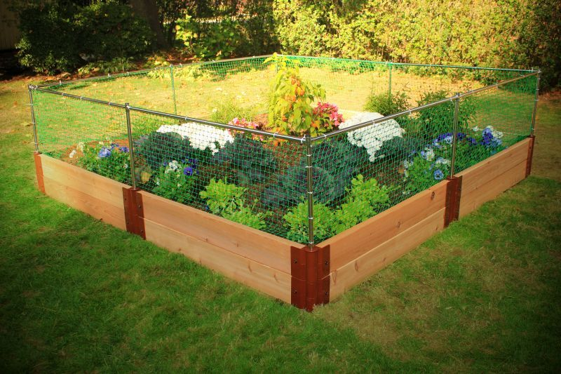 Raised vegetable garden layout plans vegetable garden for Garden bed fence ideas