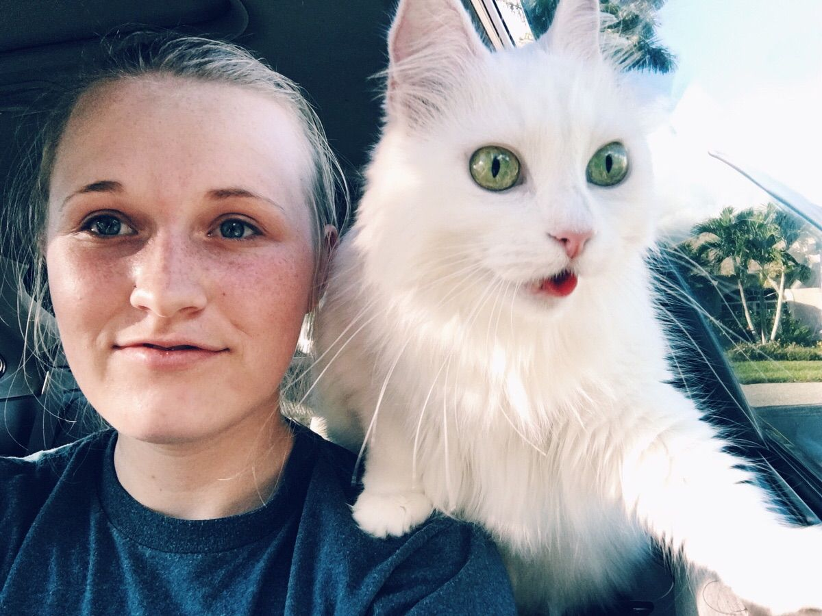 My cat doubles as my parrot. - Imgur