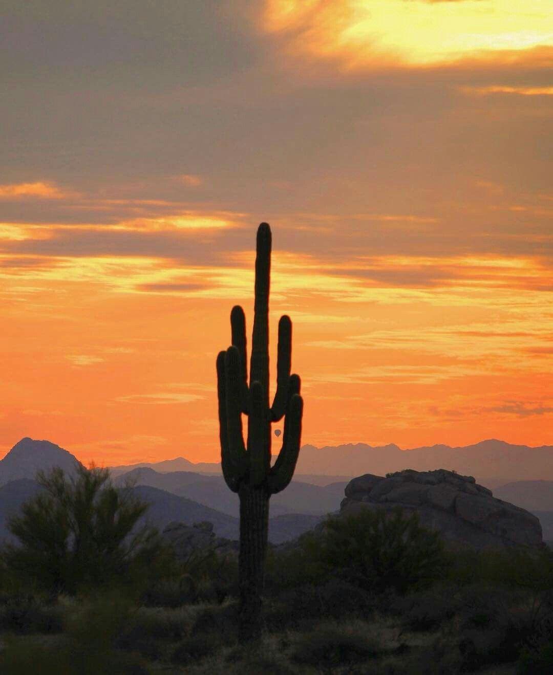 Pin by Hap Hall on Desert Desert photography Desert