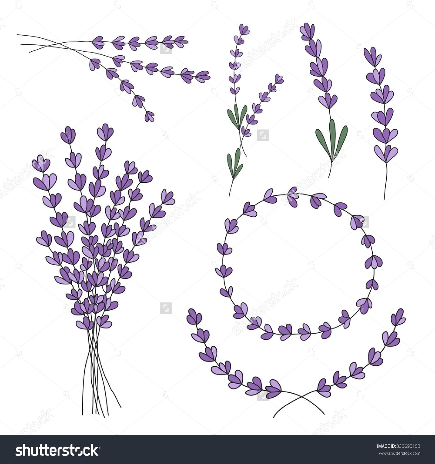 Line Drawing Lavender : Lavender drawing google search pinterest