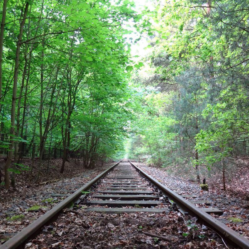 Train Tracks vanishing point