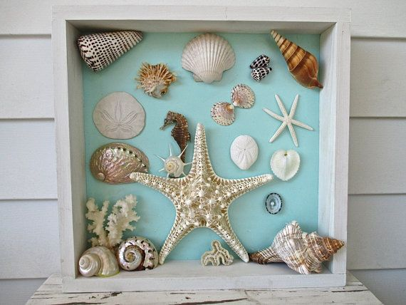 Vintage Inspired Seashell Shadow Box Handmade by searchnrescue2