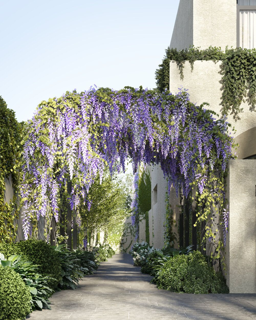 Huntingtower Road Tamsin Johnson In 2020 Wisteria Arbor Landscape Design Archway