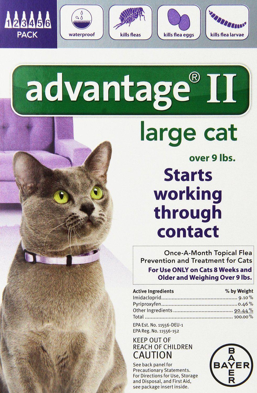 Amazon Com Bayer Advantage Ii Large Cat Over 9 Pound 6 Month Pet Flea Drops Pet Supplies Cat Fleas Flea Control For Cats Fleas