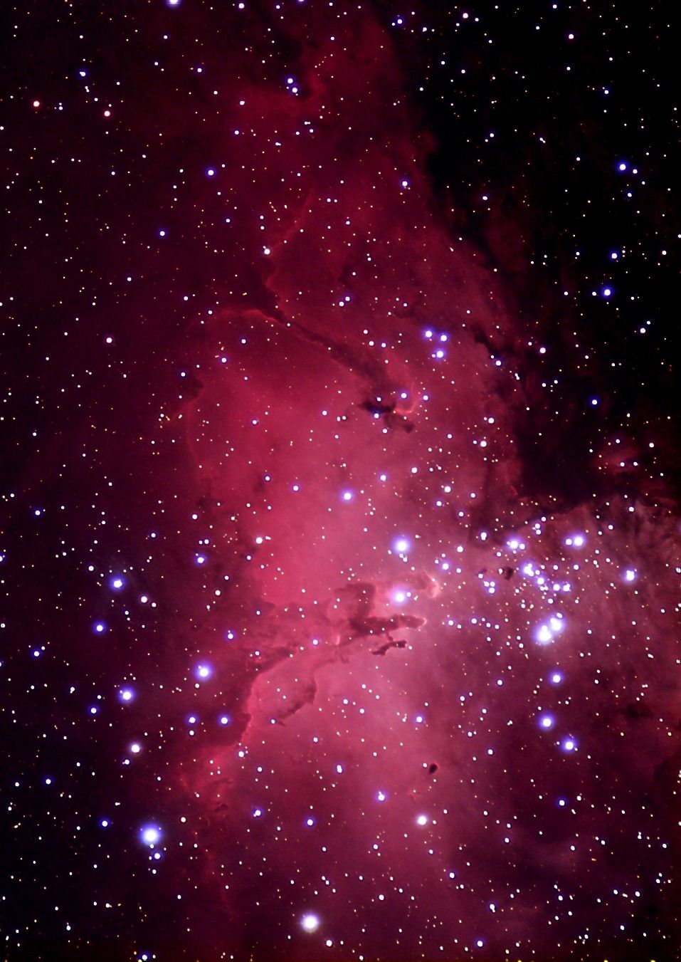 The Wine Had Gone To My Head Or Was It The Night Itself The Sweetness At The End Of Summer Louise Gluck From With Images Nebula Space Images Eagle Nebula