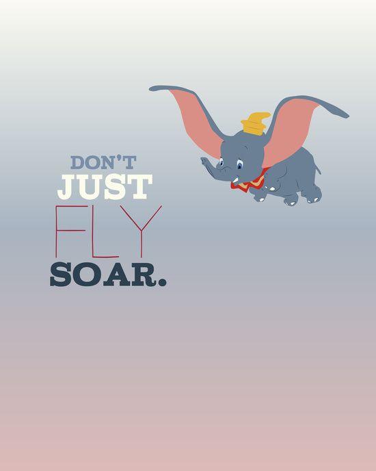 c51c0de4b6 don t just fly