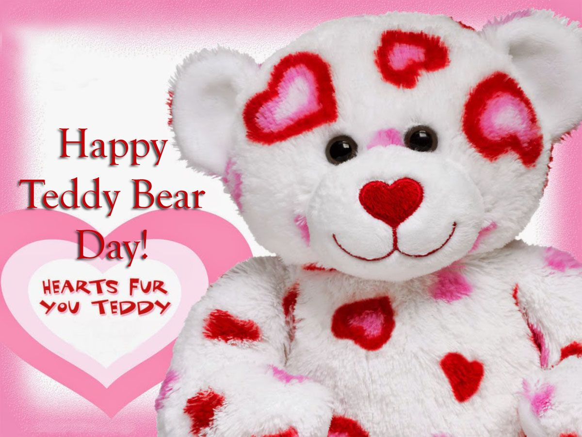 Happy teddy bear day 2016 hd wallpapers n images free download lovely and beautiful teddy bear wallpapers allfreshwallpaper voltagebd Choice Image
