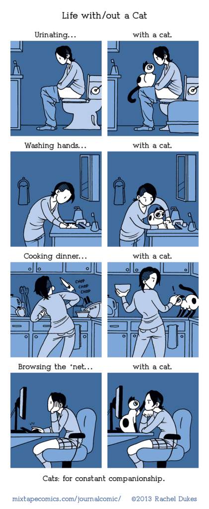 Life with/out a Cat | Frankie Comics by Rachel Dukes