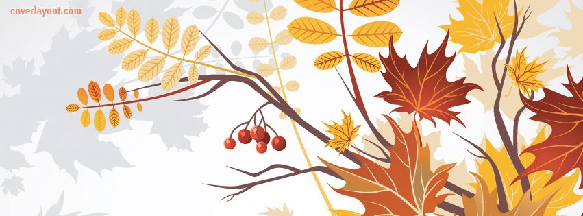 Its Time For Fall Leaves facebook cover  CoverLayout.com