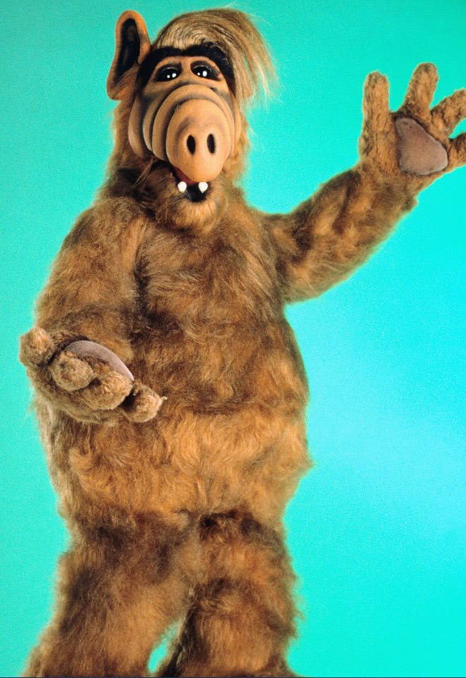 ALF Movie in the Works | TV & Movie Nurses | Movies, 80 tv ...