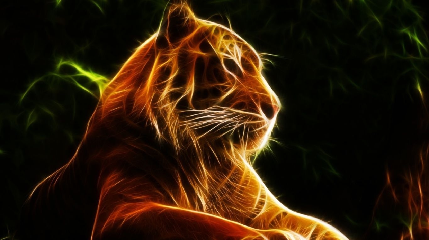 Live Wallpapers for Chromebook Tiger wallpaper, Cute