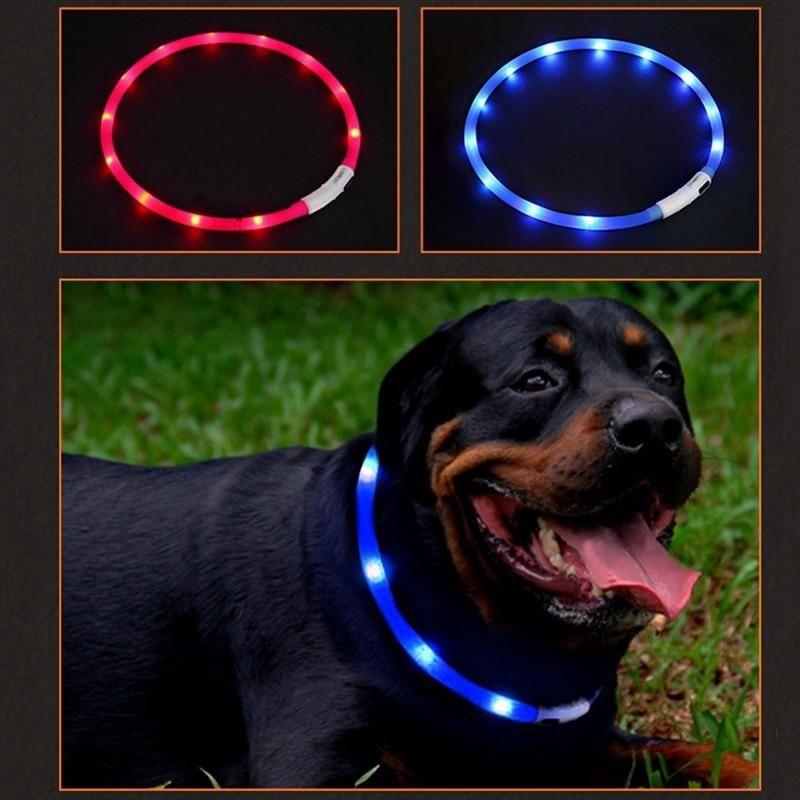 Pin En All Kinds Of Pet Accessories