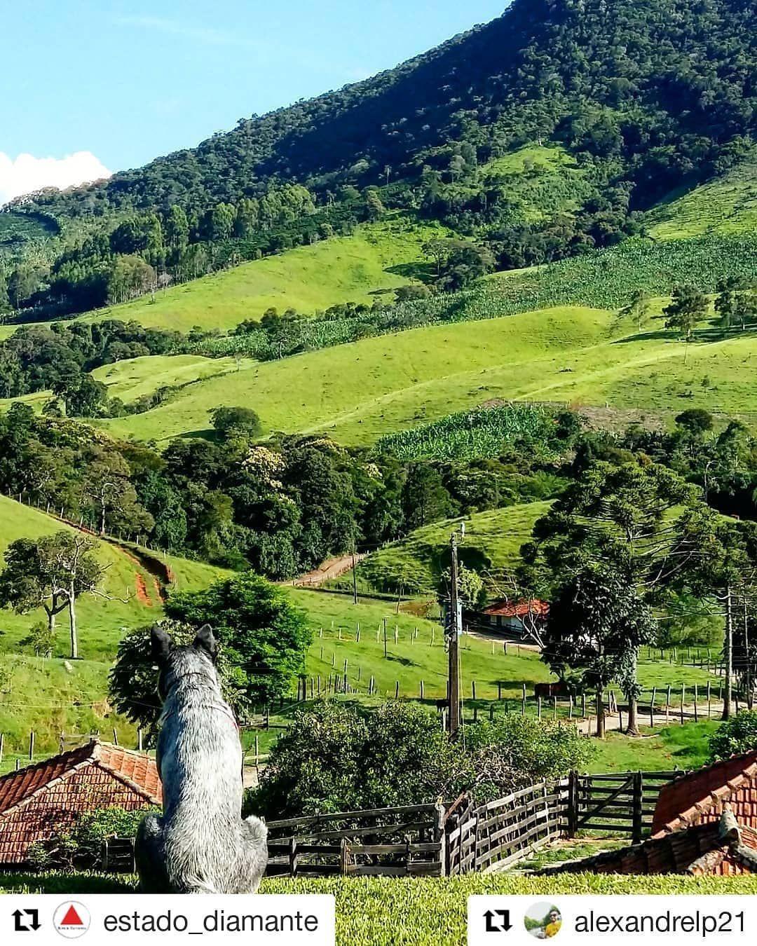 Cristina Minas Gerais fonte: i.pinimg.com