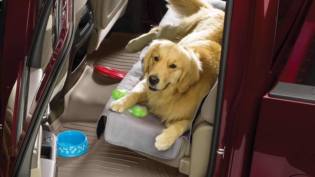 Seat Protector Seat protector, Weather tech, Pet seat covers