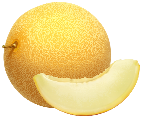 Cantaloupe Png Clipart The Best Png Clipart Fruits For Kids Fruit Fruit Photography Are you looking for cantaloupe design images templates psd or png vectors files? pinterest