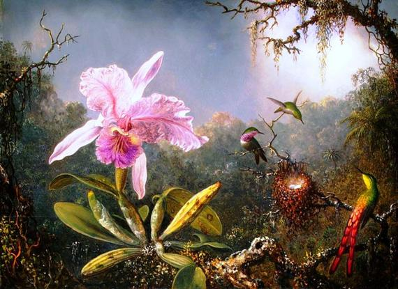 Buy 2 Get 1 Free Cattleya Orchid And Three Hummingbirds 599 Cross Stitch Pattern Counted Cross Sti Hummingbird Painting Martin Johnson Heade Orchid Wallpaper