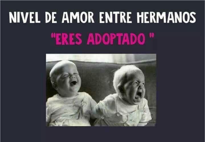 Nivel De Amor Entre Hermanos Memes Interesting Art Read News