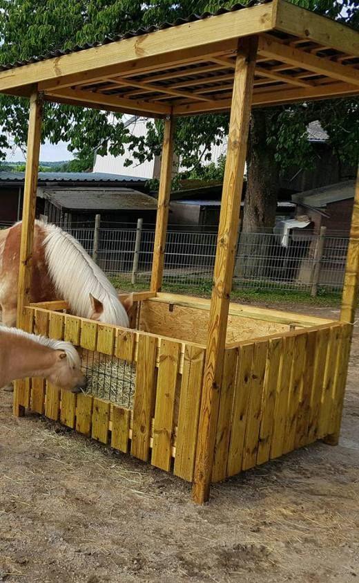Christin Frohberg Raufe Fur Gros Und Klein Mit Bildern Pferdehaltung Pferde Pferde Stall Bauen
