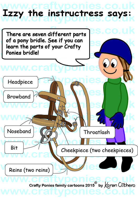 Izzy Instructress Shows Us The Parts Of The Bridle Family
