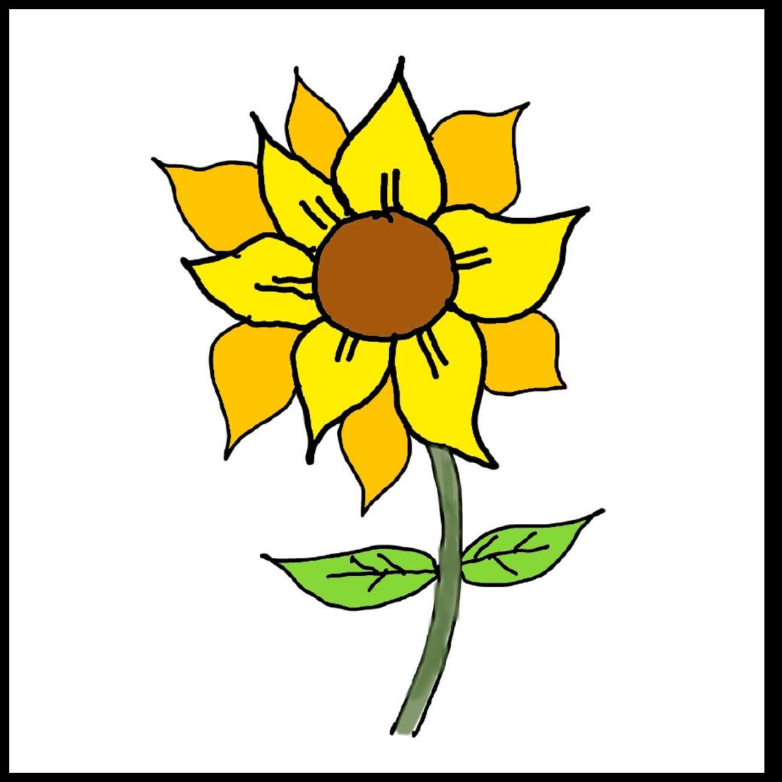 Cara Mudah Mengajari Anak Anak Menggambar Bunga Matahari Bunga Matahari Menggambar Bunga Bunga