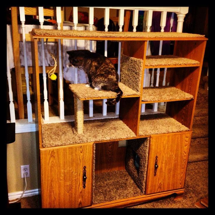 Old entertainment center upcycled for a cat play area