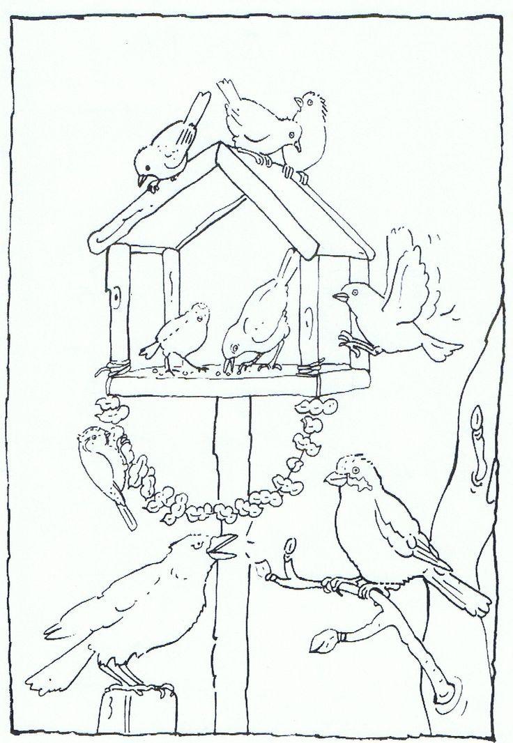 feeding birds in your garden coloring page   vogels voeren
