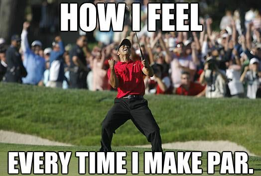 05a3c81c4432f6645deba21a028da088 the best golf memes funny pinterest golf, memes and golf humor