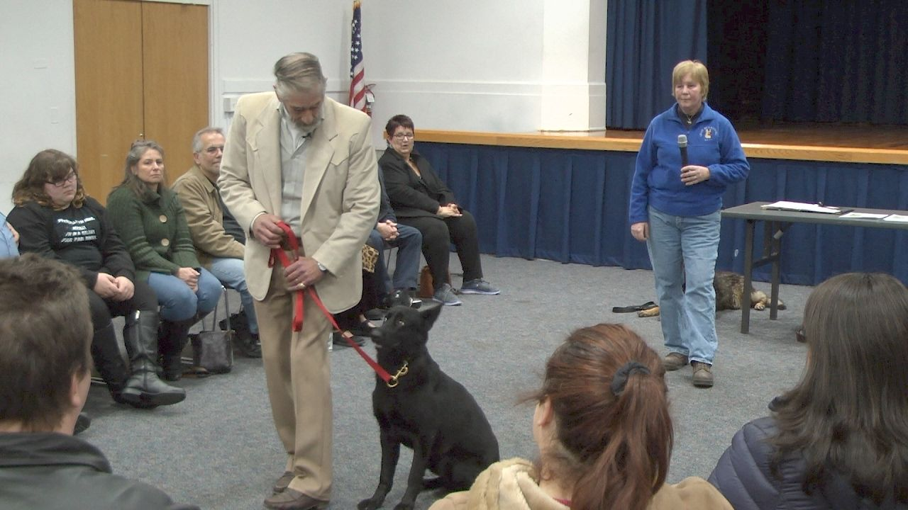 Dog training basics at middle country library dogs dog