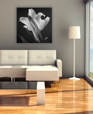 'Lily' Canvas Print by Michael Harrison