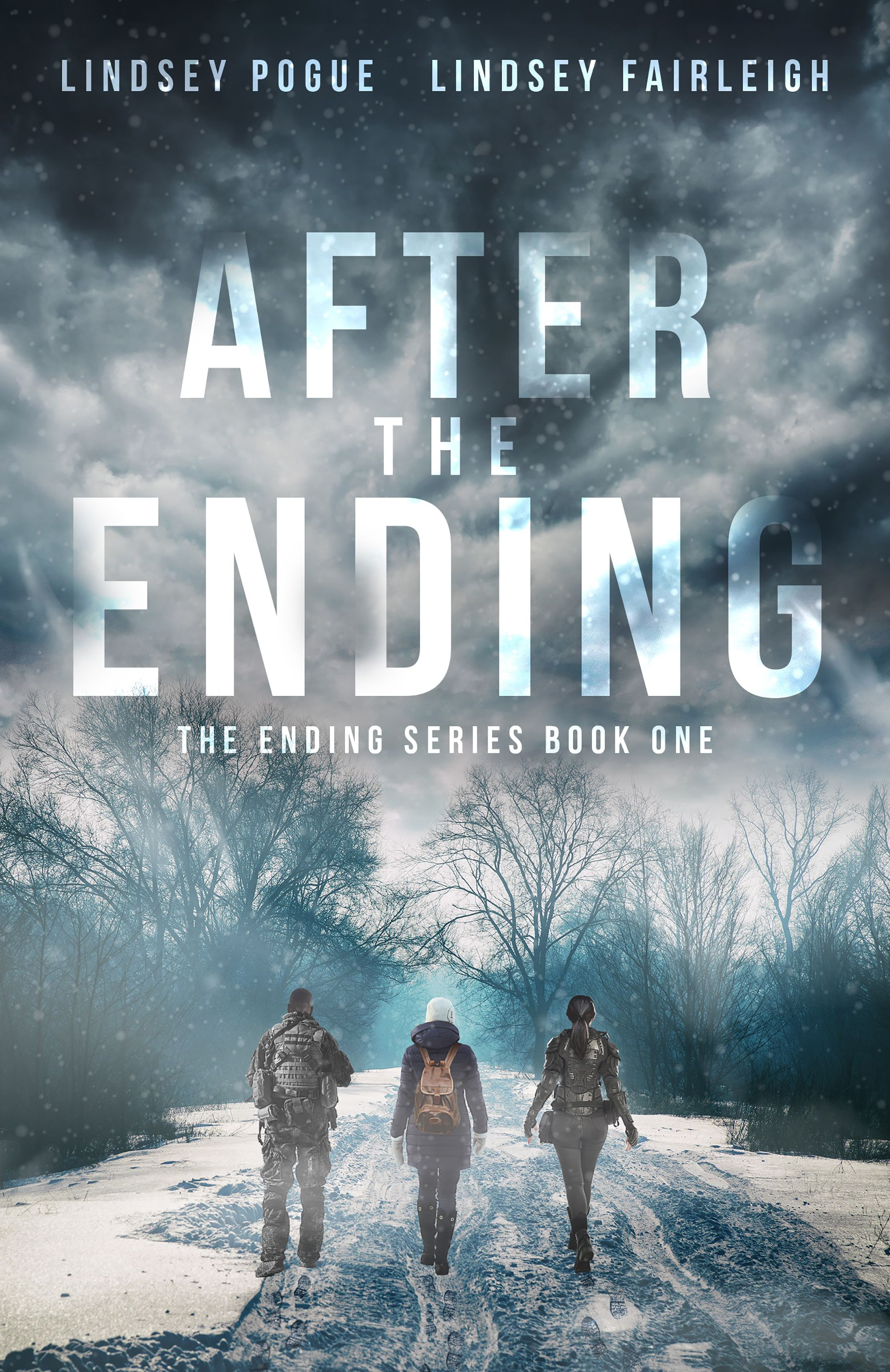 After the ending the ending series 1 zombies books
