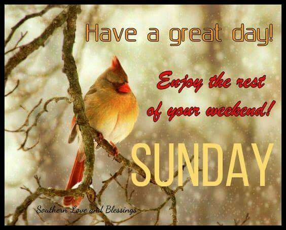 Have A Great Day! Enjoy The Rest Of Your Weekend! Sunday