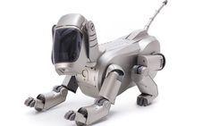 HELLO ROBOT: Diese wegweisende Ausstellung im Vitra Design Museum macht deutlich, dass die zunehmende Ausbreitung der Robotik in unserem Alltag von Ambivalenz begleitet wird. Link: http://www.bold-magazine.eu/hello-robot/  #Computer #Design #Hellorobot #Menschundmaschine #Robotik #Vitradesignmuseum #Weilamrhein