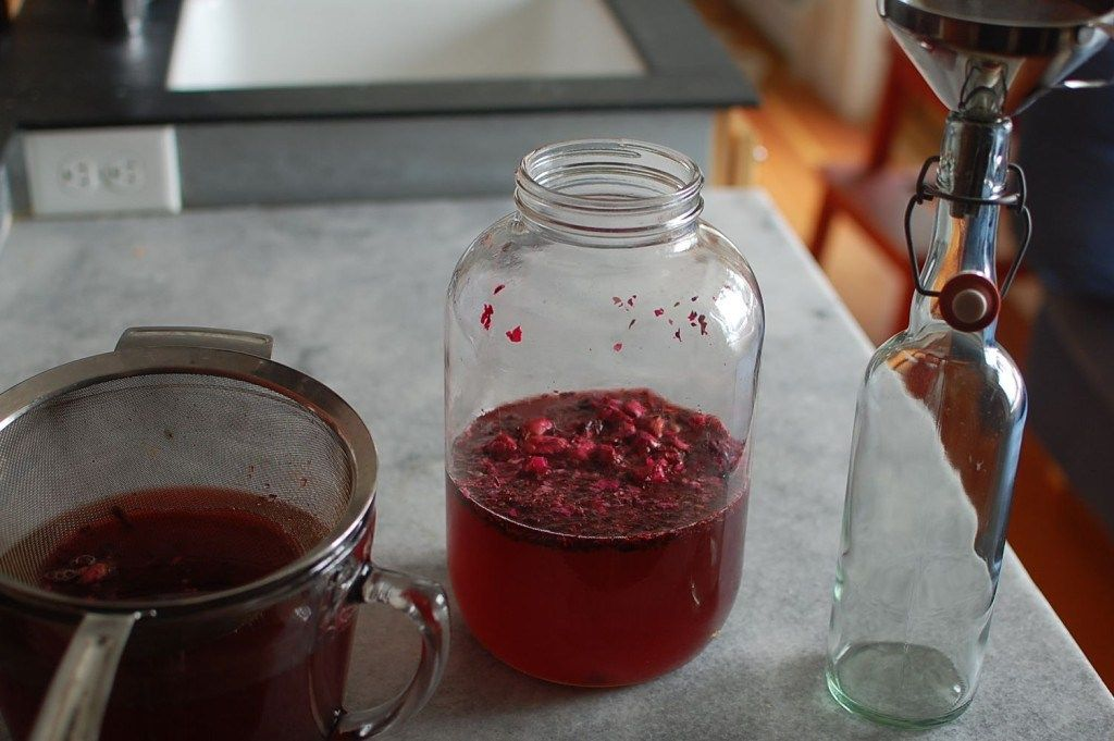 Hibiscus Rose Kombucha Recipe Based On Rise Kombucha Kombucha
