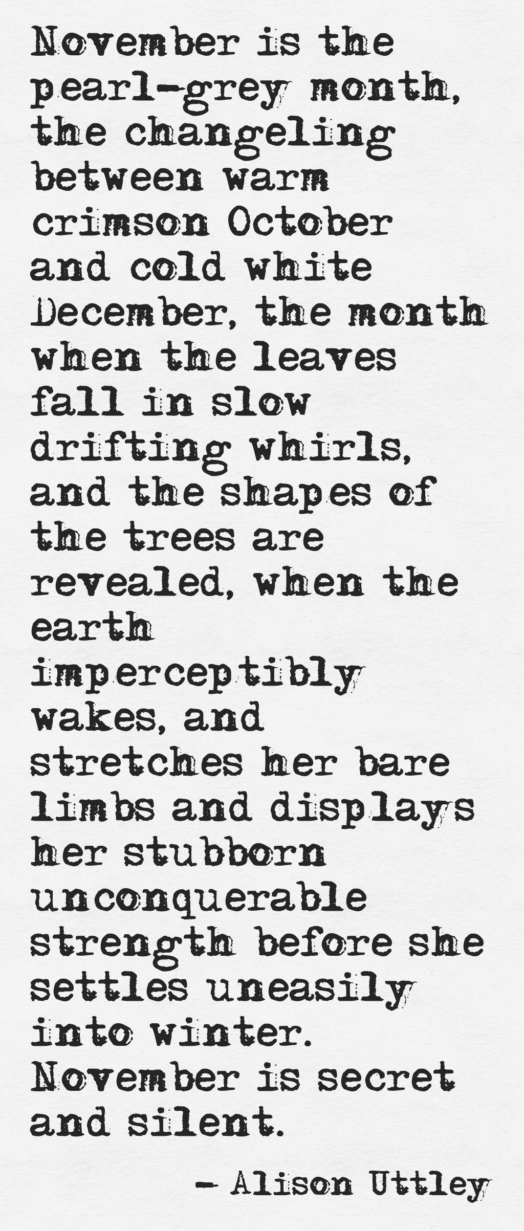 November Poems 5