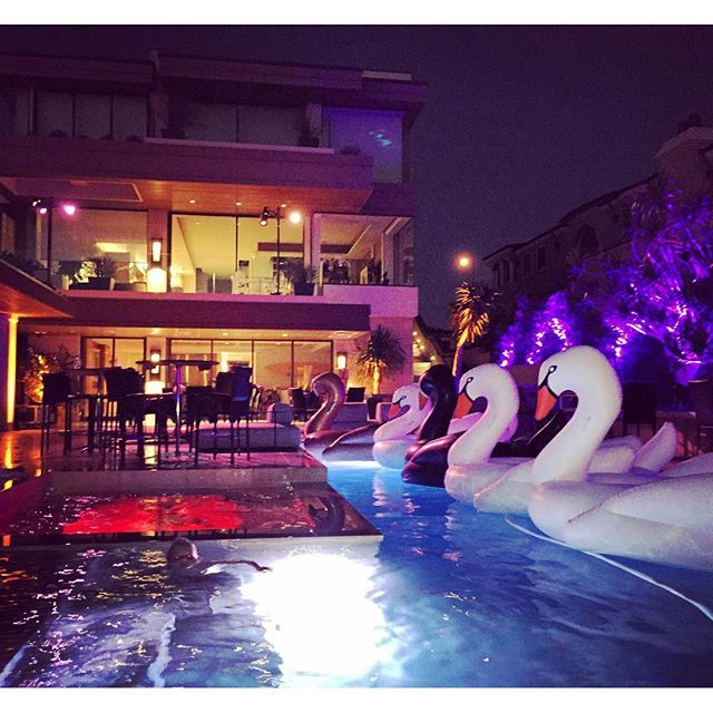 White Swan Pool Float Night Pool Party Pool Party Decorations
