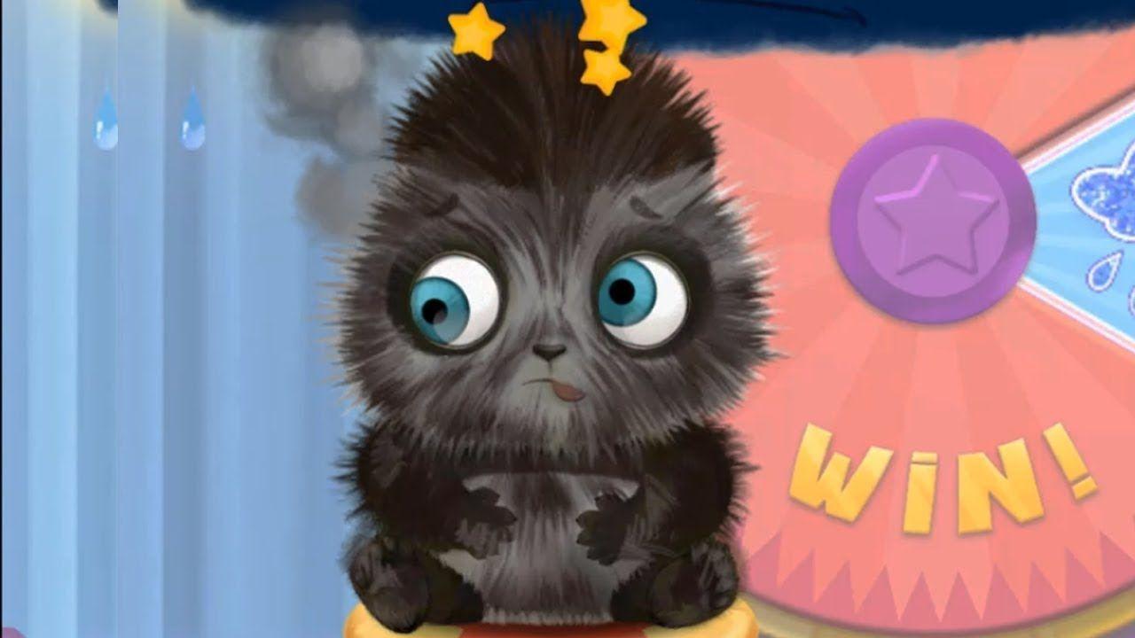 Funpark Owl