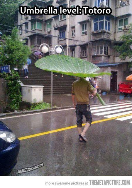 Umbrella Level: TOTORO!