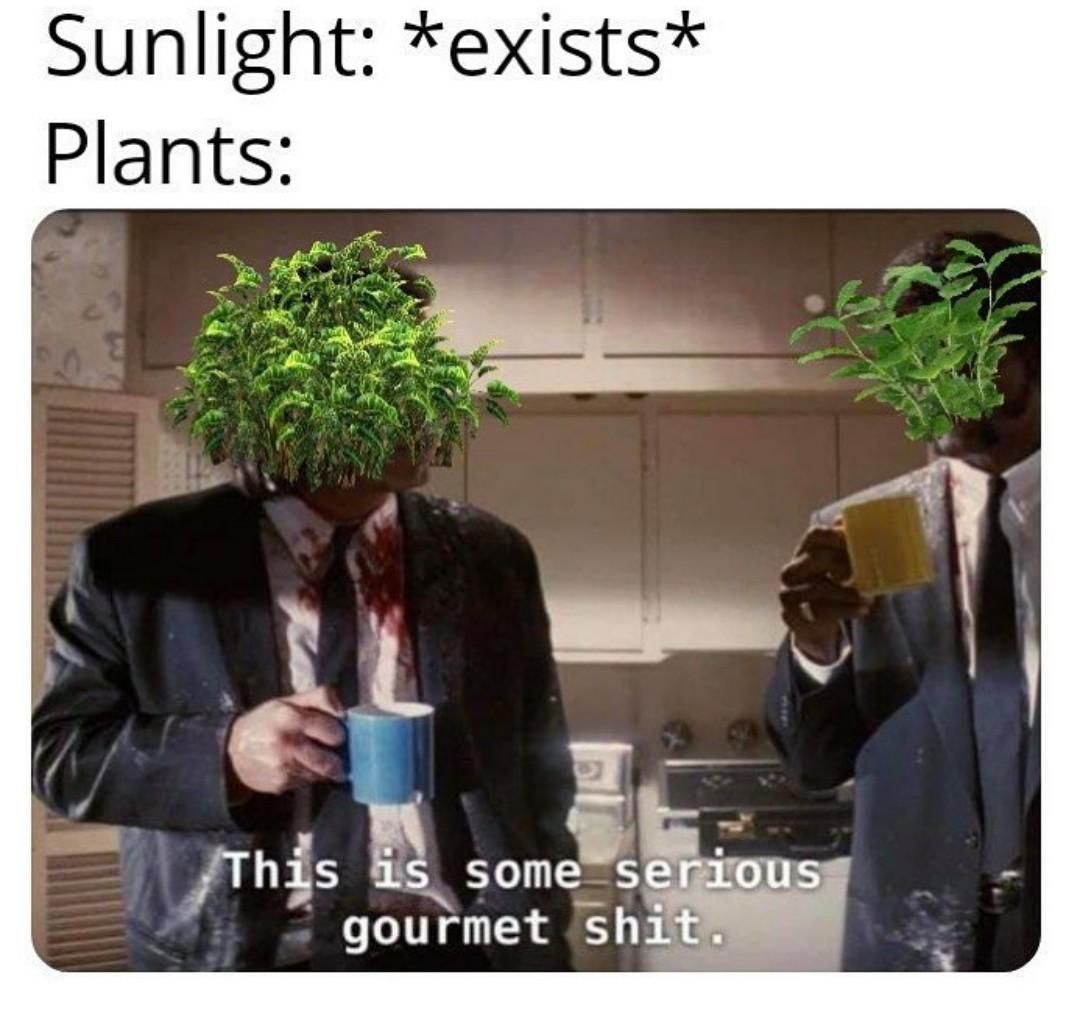 Spring Time Coming You Know What That Means Gardening Memes Plant Lady Plant Jokes