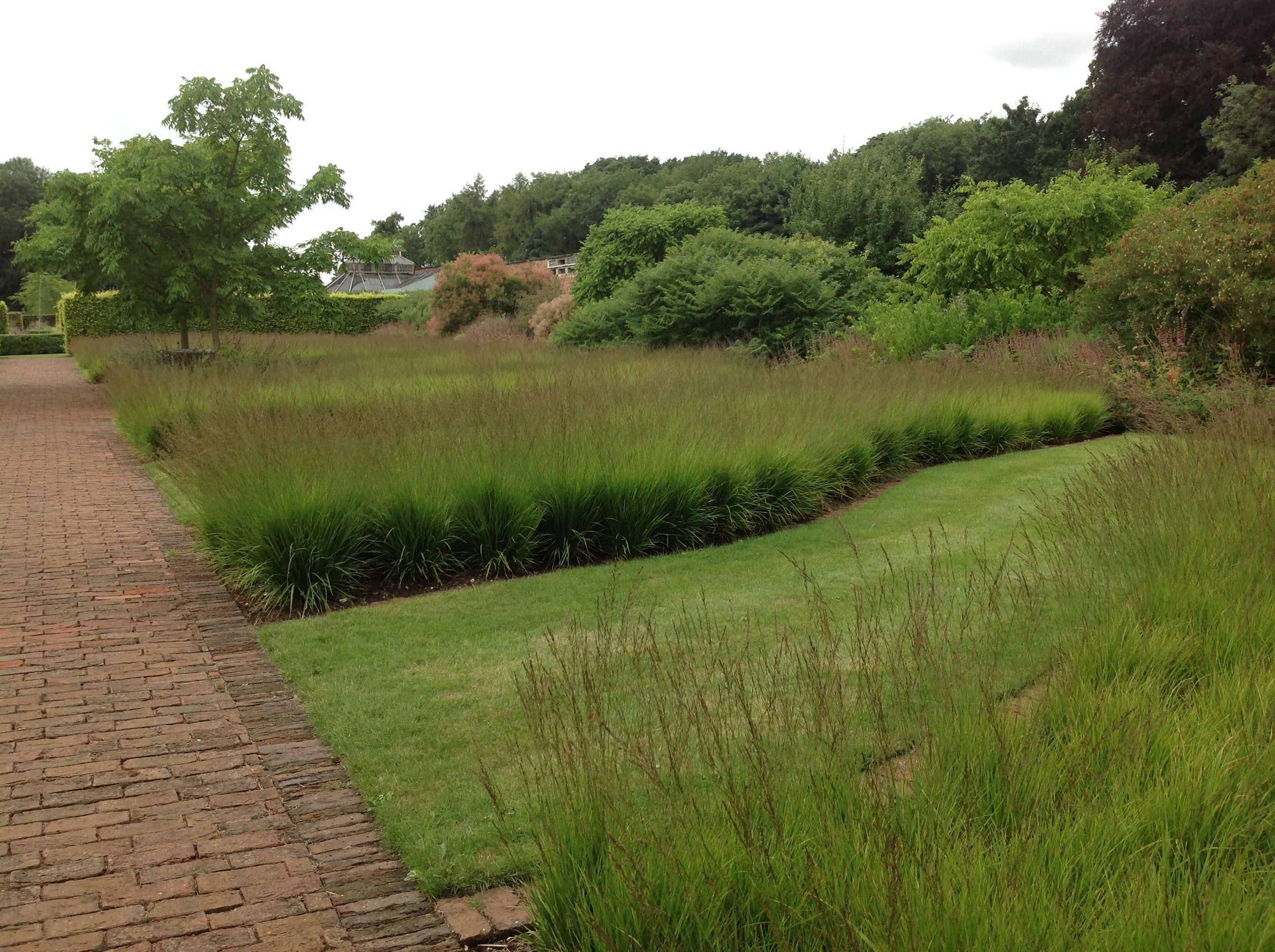 Piet Oudolf | Landscape design, Garden design, Plant design