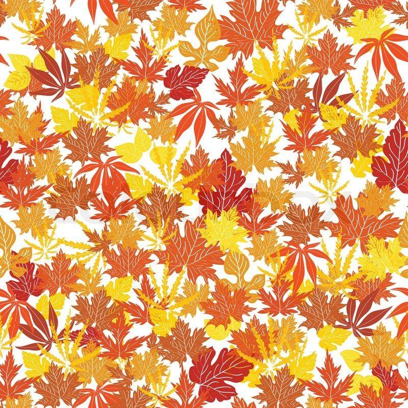 Bedroom Cabinet Designs Curtains Images For Bedroom Latest Bedroom Colour Orla Kiely Wallpaper Bedroom: Autumn Orange Leaves Wallpapers Autumn Orange Leaves Stock