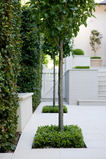 Modern Classic ‹ Peter Fudge Really love all the planting, great looking hedge.