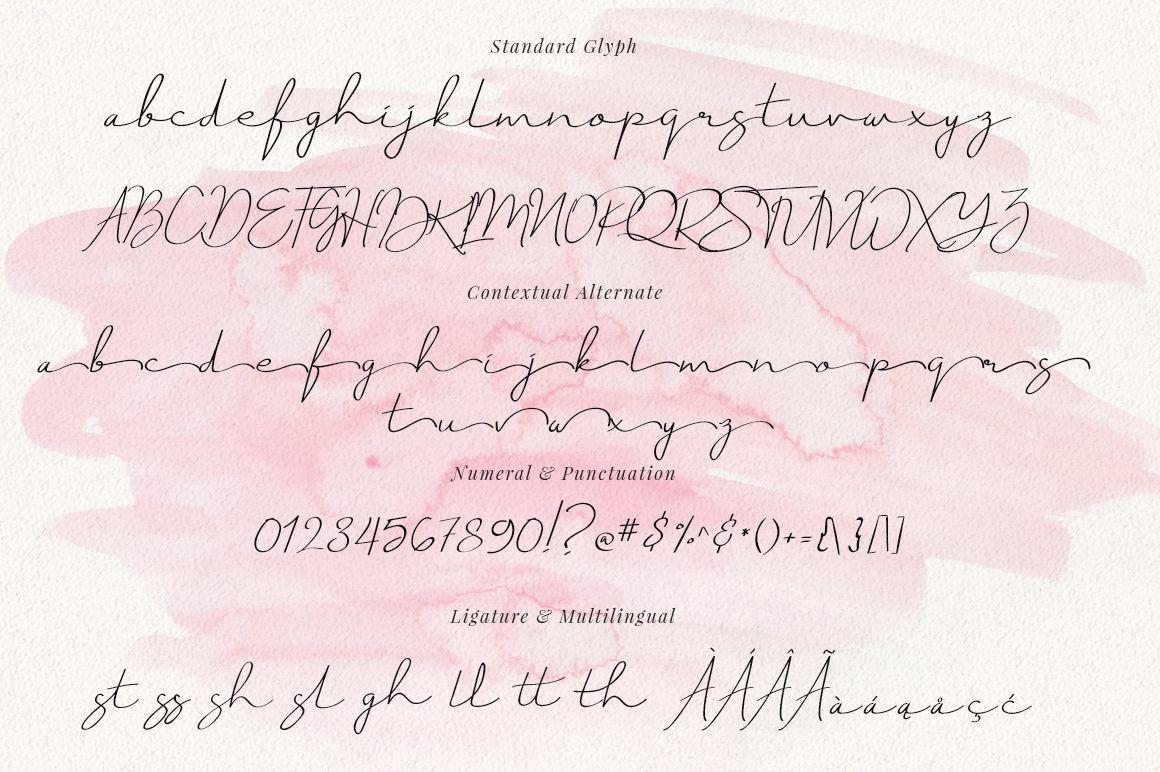 Just Signature Script Font | Martial Art Logo | Script fonts